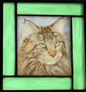 Maine coon fused glass portrait